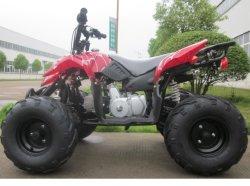 Kids ATV 110 cc 125cc ميني موتور رباعي الدراجة مع CE