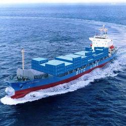 Overzees die de Logistische Dienst van China verschepen aan Nhava Sheva India