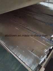 Fatia de alumínio do núcleo de favo de mel do preço barato com tamanho diferente