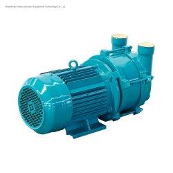 반지 진공 펌프가 액체 (물) 반지 진공 펌프에 의하여 Sz 급수한다