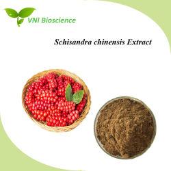 SGS ISO Certified Schizandrin/Schisandra Schisandra chinensis Extracto Extracto/
