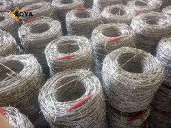 Galvanizados elétrico/Banheira médios revestido de PVC/Galvanizado Arame farpado/Fio Navalha/Barreira de Segurança/Fazenda/Fio da cerca de protecção/jardim a Régua/Wire Mesh