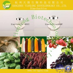 Dimethachlon ( 96% TC 、 40% WP ) - 殺菌剤