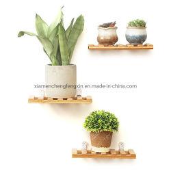 3 Planken van de Vertoning van de rij de Muur Opgezette, Drijvende Plank, de Natuurlijke Tribune van de Installatie van de Bloem van het Bamboe Ingemaakte voor Huis en Bureau