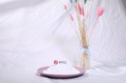 Produits chimiques du dioxyde de titane rutile Blanc peinture Lot maître Pigment en plastique R216