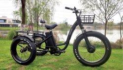 De Elektrische Driewieler Met drie wielen van de Autoped van de Macht van het Lithium van Wblddc (1905-1)