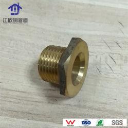 Espigão de latão para aquecimento conexões dos tubos de água quente