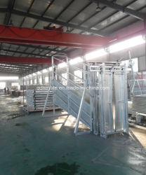 Calha de carga para o sistema de manuseio de bovinos