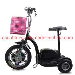 Le pliage trois roues scooter électrique Tricycle scooter de mobilité vélo électrique pour adulte