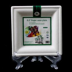لوح مربع ورق قابل للتحلل للاستعمال مرة واحدة لعجينة قصب السكر البيضاء القابلة للتناول/Compostelle لوحة الورق المستطيل