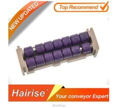 Raad van de Overgang van de Transportband van de Rol van Hairise van de hoge Norm de Plastic (harZMB-2)