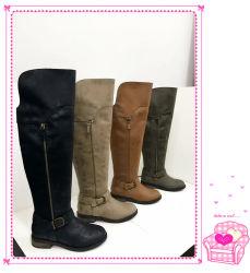 De Warme Laarzen van de Winter van de Laarzen van de Vrouwen van de manier