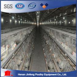 Strumentazione del pollame della gabbia del pollo di Jinfeng che coltiva progetto