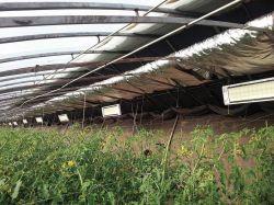 Переносные Нагреватели Инфракрасный нагреватель для выбросов парниковых газов