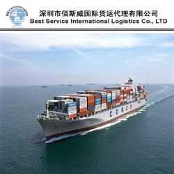 Ozean-Transport-Service/Behälter-Verschiffen-Agens/Fracht-Absender (FCL 20 '' 40 '')