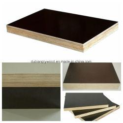 よい紙やすりで磨かれたフィルムは構築のための合板か材木またはBuildmingの文書に直面した