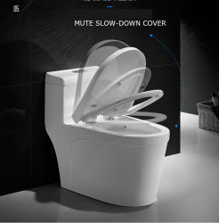 Haute qualité Nano-Ceramic Siphonic populaire toilettes BC-1313