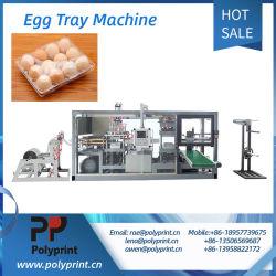 De de Plastic Plaat van het Ei van kwartels/Machine van Thermoforming van het Dienblad