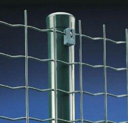 سياج يورو هولندا الأسلاك شبكة تنظيم شبكة مواد PVC طلاء الشبكة العنكبوتية السلكية الملحومة من الحديد