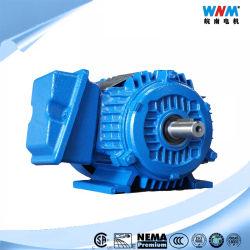 Nep CSA Motor In drie stadia Pdf van het Ontwerp B Sf1.15 AC van de Bijlage van Tefc van de Efficiency van de Premie UL1004 de Gediplomeerde NEMA Elektrische Asynchrone voor Pompen van Ventilators nep145t-2 2HP