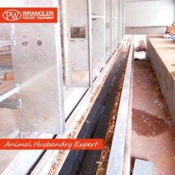 دجيبوتي [ه] نوع بطارية [برويلر شكن] قفص مع 100 عصافير & صغيرة طبقة قفص يستعمل في دواجن يزرع
