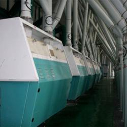 أداء جيد 50 طن/د مصنع تصنيع طحن الذرة والقمح الطري طحن الطحين