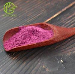 Barbabietole in polvere verdure disidratate Arciolato Viola superiore di qualità Halal Certificato