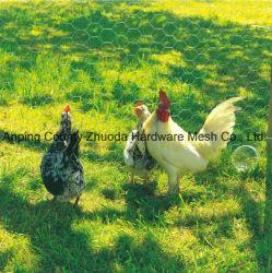 Malla de alambre de pollo galvanizada malla malla pajarera Conejo mascota, 5m 10m 25m 50m