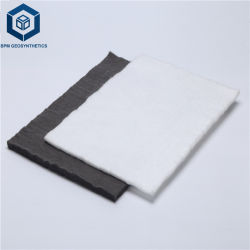 100g 150g 200g 250g 300g Blanco Negro Geotextile Geo 2021 precio de fábrica de Textiles no tejidos para carreteras y puertos/depósitos/canales y presas Project