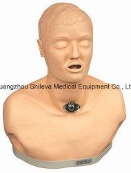 Modèle médical Adulte Avancé trachéotomie simulateur de soins de modèle d'enseignement