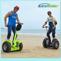 2016 heiße Selling Green Power Electric Car Powerful Brush Motor 2000W Two Wheels Standing Smart Balance Hoverboard Stadt Road Scooter