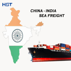 Internationale Seefracht Tür zu Tür zu Indien Logistik-Service