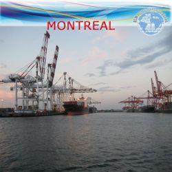 Ocean o envio da entrega a LCL para Montreal pela Operadora Zim