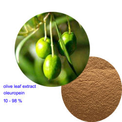 Extracto de la hoja de oliva 10%-98% Oleuropein Hydroxytyrosol