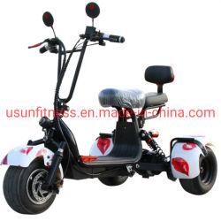 Fiets 800 van de Zak van de Motorfiets van de Kinderen van de Fiets van het vuil MiniFiets van de Jonge geitjes van W de Elektrische met Dubbele Zetels