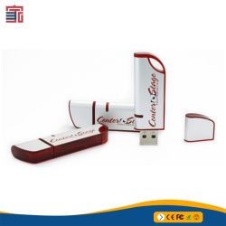 Plastik-USB-Blitz-Laufwerk des Fabrik-Preis-1GB 2GB 4GB 8GB 16GB 32GB 64GB förderndes preiswertes