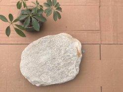 道の装飾を美化するためのP014によって着色されるスレートの飛石