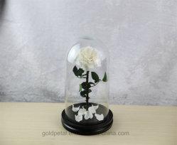 3 〜 4 年の間、白バラの花が持続しています 洗礼式ギフト用のガラスドーム