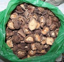 中国卸売乾燥した潮武マッシュルーム全 50g 、 100g 、 200g 、 400g