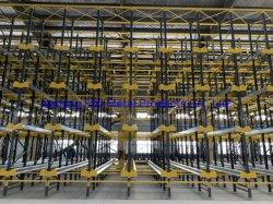 Contrôle Ebil-Warehouse /Système de gestion de rack de stockage automatique de la navette de radio