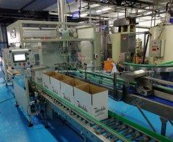 Le sel automatique industrielle de la crème glacée au chocolat Snack CUPS CUPS Pochette carton machine d'emballage sacs CAS