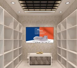55-дюймовый 4K Сверхузкий солнечных лучей для чтения Digital Signage рекламные окна отображения
