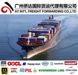 Behälter-Verschiffen-Service nach Puerto Rico von China durch Sea