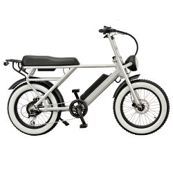 Pneu 20 pouces 48V 500W l'arrière de la conduite Moteur Brushless avec connexion facile libération Bafang vélo électrique E-Bike avec siège confort