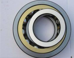На заводе из углеродистой стали Custom Двухрядным 7308AC угловое контакт шариковый подшипник