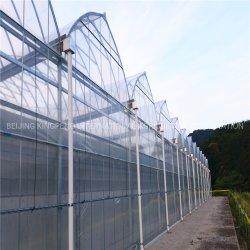 غطاء Greenhouse Po/Po مواد غطاء فيلم لـ Tunnel House