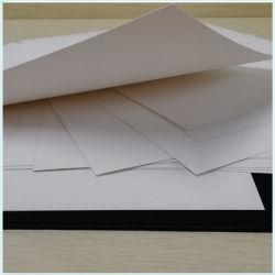 Plegado de calidad alimentaria de la junta de corte Fbb/SBS/C1s Documento de la Junta de color blanco marfil