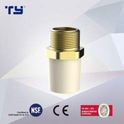 Acoplamiento macho de latón de cobre de CPVC ASTM D2846 de plástico Tubo de suministro de agua/Tubo adaptador conjunta