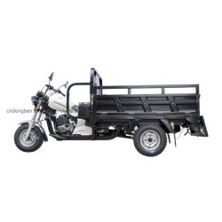 200cc Dongben populares triciclo carga três Wheeler