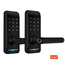 Bluetooth スマートロック、指紋、スマートカード、メカニカルキー、ゲートウェイ(オプション) H16